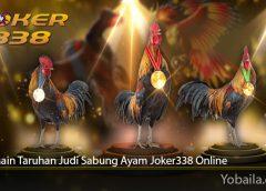 Cara Main Taruhan Judi Sabung Ayam Joker338 Online