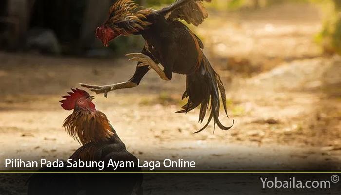 Pilihan Pada Sabung Ayam Laga Online